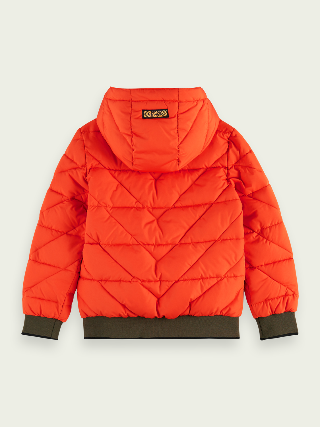 Boys Zip-up padded jacket