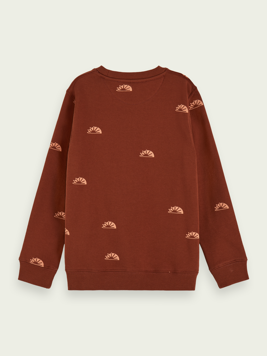 Kids Printed crew neck sweatshirt