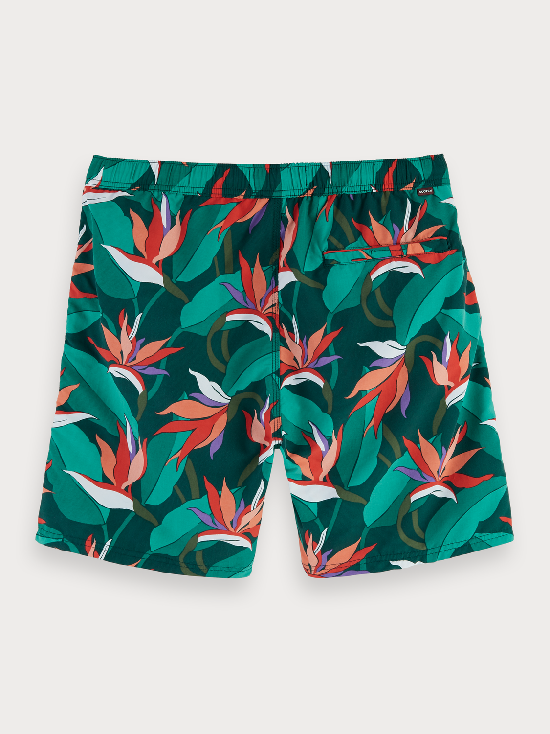 Men Printed Swim Shorts