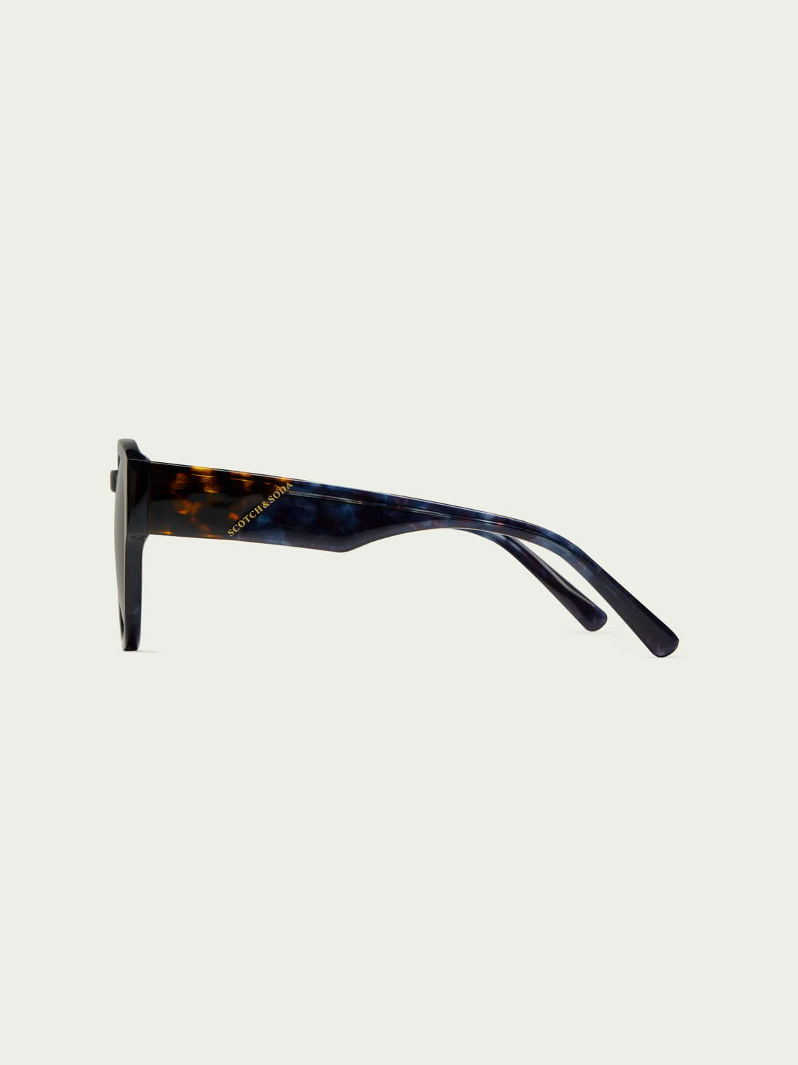 Women Biscayne - round-frame acetate sunglasses